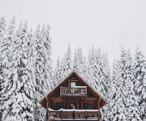 cabin, fun, and snow image