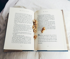 books, pages, and bookworm image