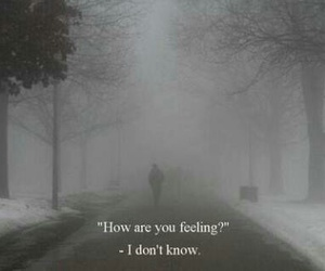 feelings, quotes, and i don't know image