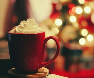 red cup image