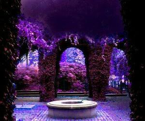purple, flowers, and magic image