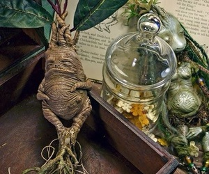 harry potter, magic, and nature image
