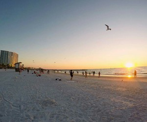 beach, florida, and sunset image