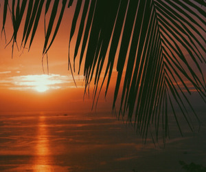 summer and sunset image