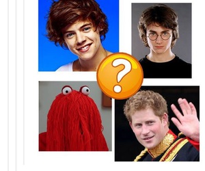 funny, lol, and harry image