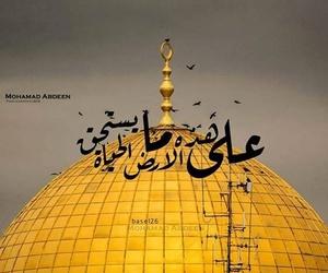 Image by Suhaib Shubita