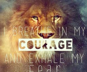 quote, lion, and courage image