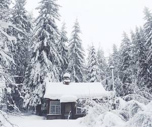 cottage, pretty, and snow image