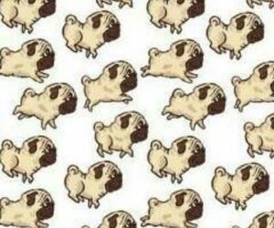 wallpaper, dog, and animal image
