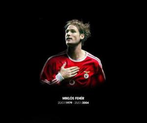benfica and feher image