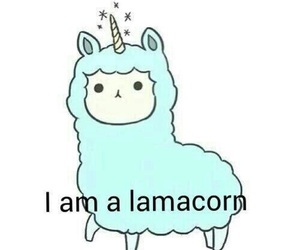 lamacorn, unicorn, and lama image