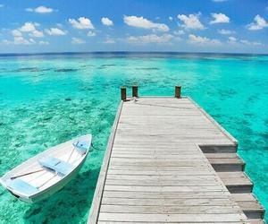 paradise and sea image