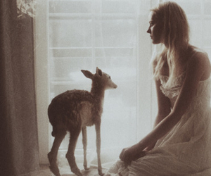 girl, deer, and photography image