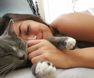 cat, pet, and love image