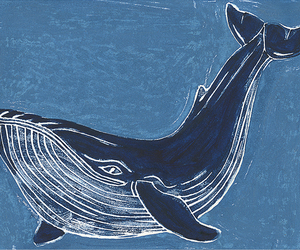 art, whale, and blue image