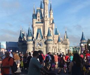disney world and magic kingdom image