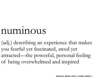 tumblr, we heart it, and nouns image