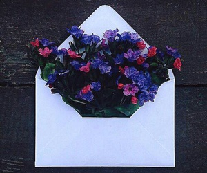flowers, Letter, and envelope image