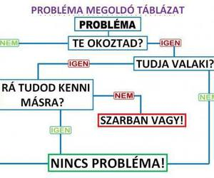 funny, problem, and magyar image