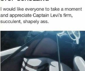 attack on titan, funny, and levi image