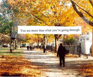 quote, text, and autumn image