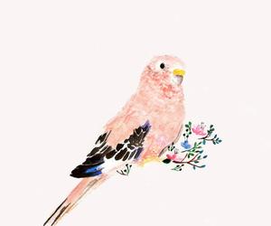 bird, art, and pink image