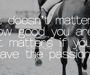 dressage, equestrian, and friendship image