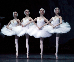 ballet, dance, and swan lake image