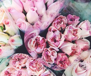 beautiful, inspo, and roses image