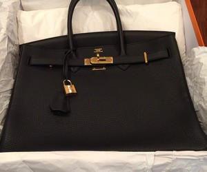 bag, luxury, and Birkin image