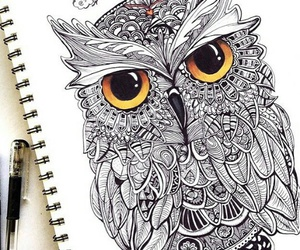 owl, draw, and art image