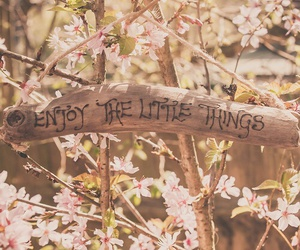 flowers, enjoy, and quotes image