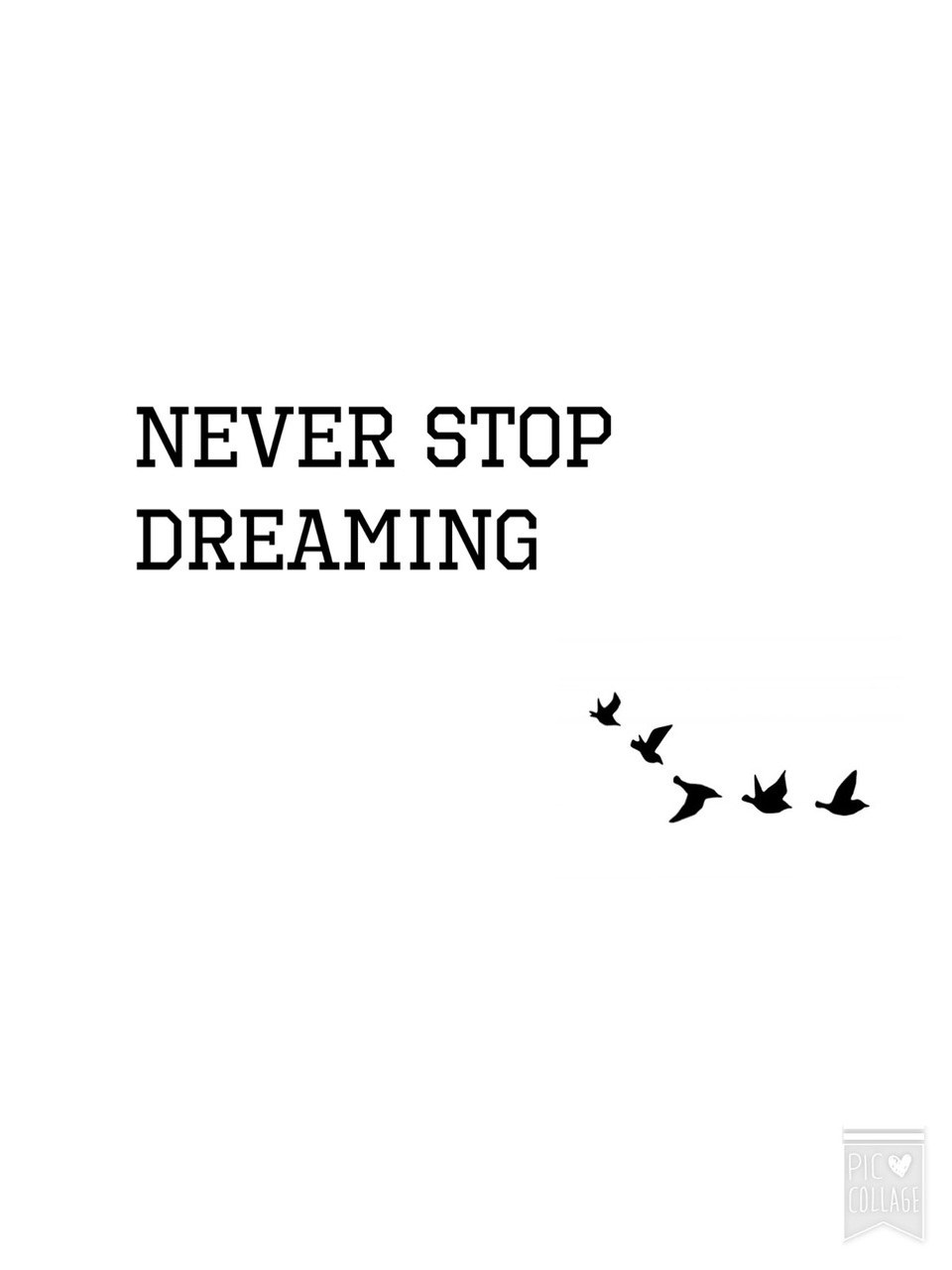 Wallpaper Never Stop Dreaming Discovered By Carolina