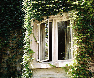 window, house, and vintage image
