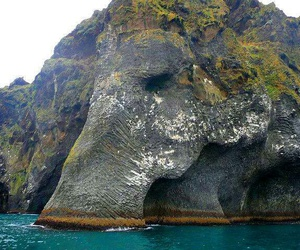 elephant, nature, and rock image