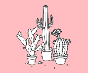 pink, plants, and cute image