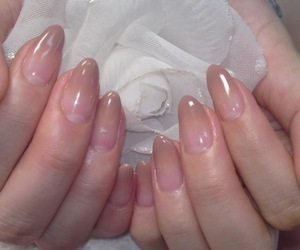 nails, pale, and rose image
