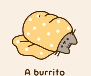 burrito, pusheen, and cat image
