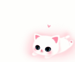 cat, wallpapers, and cute image