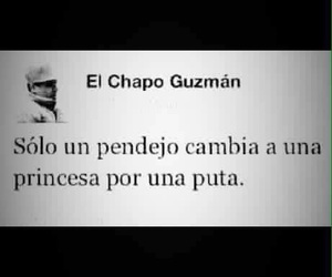 pendejo, el chapo guzman, and el chapo image
