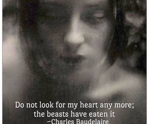 beast, Charles Baudelaire, and eat image