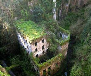 nature, italy, and abandoned image
