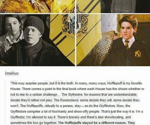 harry potter, hufflepuff, and badger image