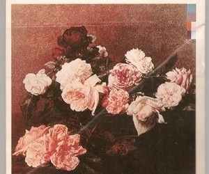 new order, flowers, and lies image