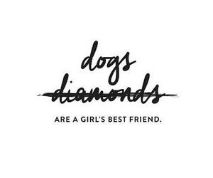 dog, diamond, and girl image