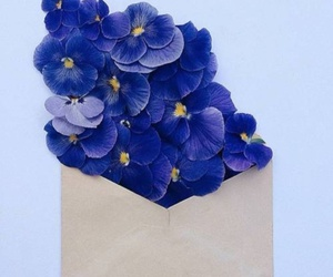 flowers, Letter, and цветы image