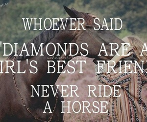 best friend, trust, and equestrian image