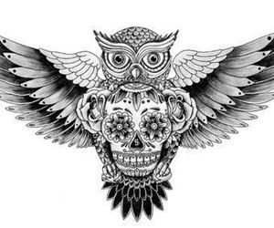 owl, skull, and tattoo image