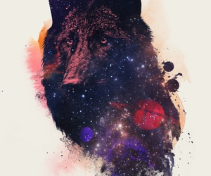art, color, and wolf image