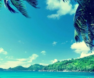 beach, paisaje, and 🌴 image